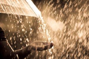 「大雨」や「土砂降り」のときに使える英語表現は、rain cats and dogs!