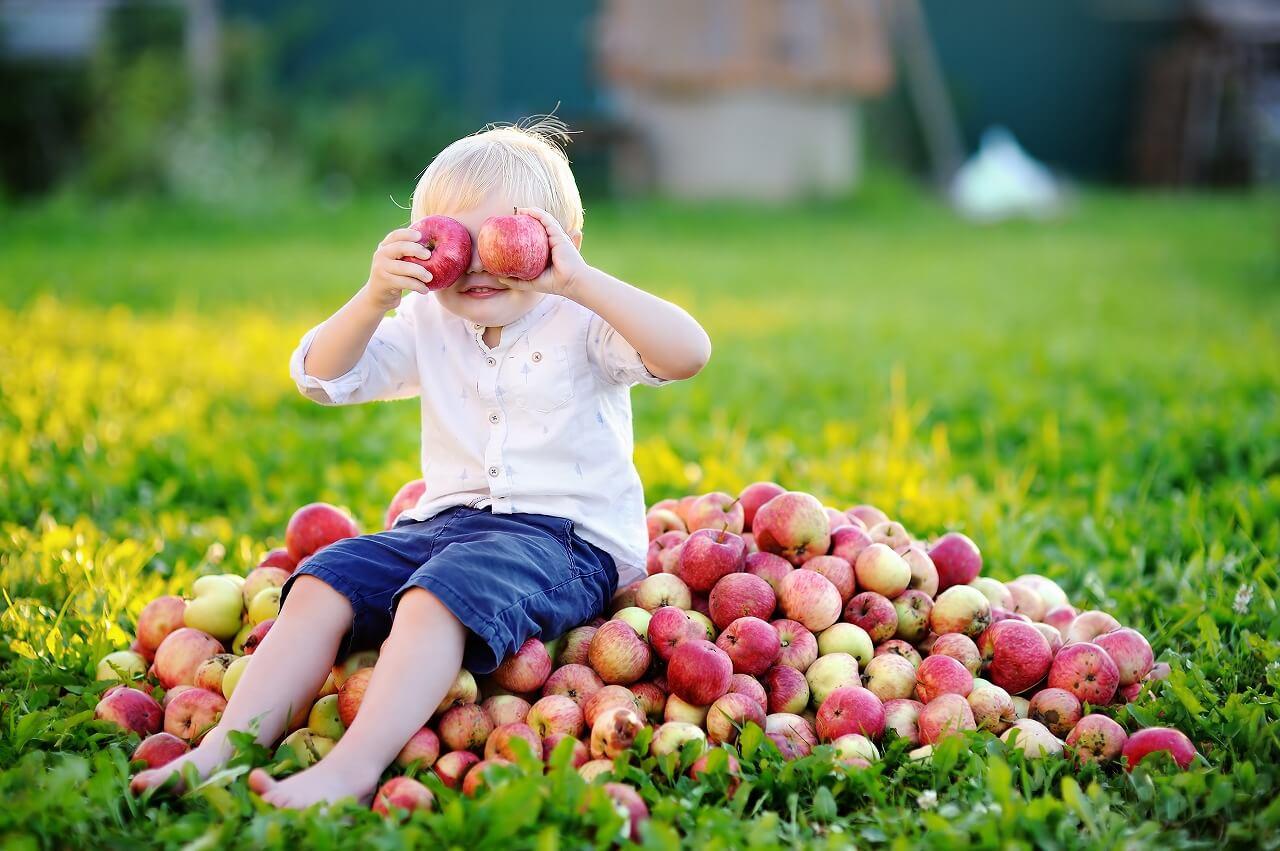 apple of my eyeの意味は「愛しい人」!例文など英語でチェック